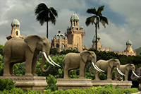 Elephant Statues - Sun City (close to Gauteng).